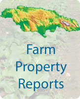 property reports